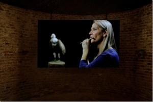 Jennifer Allora and Guillermo Calzadilla, 'Raptor's Rapture', 2012, single channel video projection, colour, sound. Photo courtesy of Allora & Calzadilla and Lisson Gallery, London.